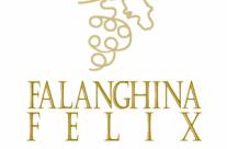 Torna la rassegna regionale dei vini da uve falanghina