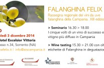 Falanghina tasting – Sorrento 3 dicembre 2014